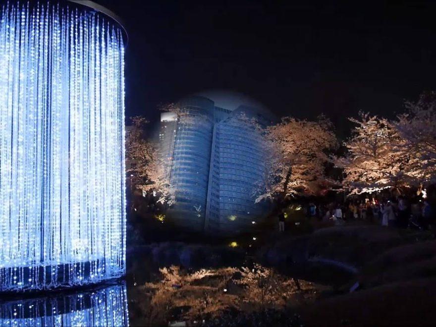 六本木ヒルズ 毛利庭園(東京) | 2019年夜桜ライトアップ・見頃情報