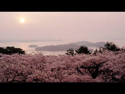 西行戻しの松公園画像