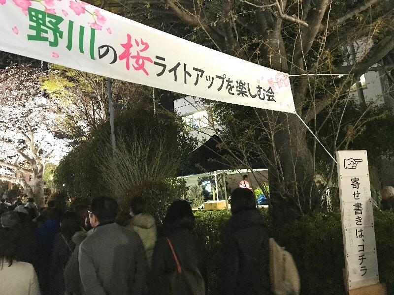 野川ライトアップ_003