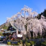 身延山・久遠寺の観光!見所とアクセス・駐車場・ロープウェイ情報