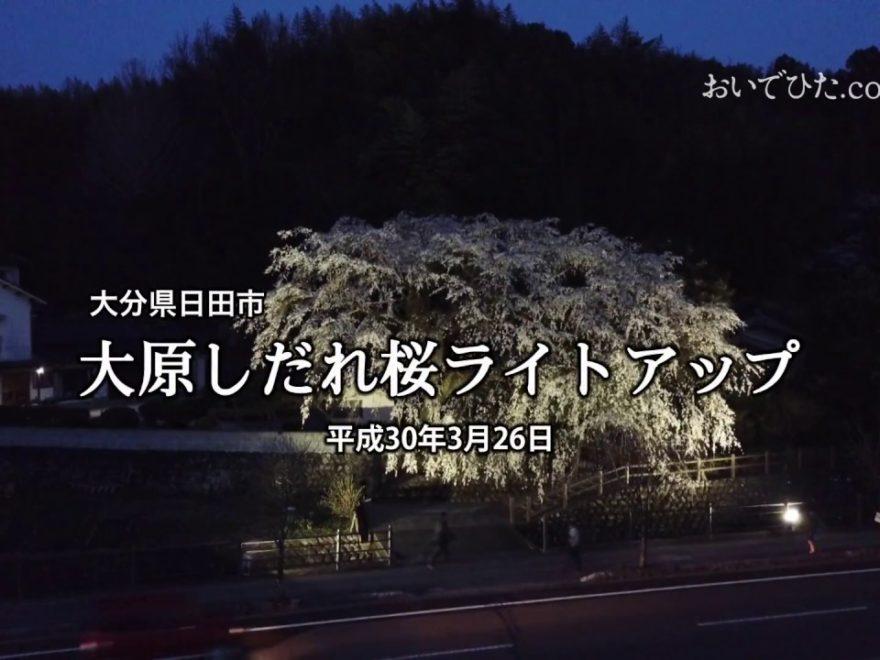 大原の大しだれ桜(大分) | 2019年夜桜ライトアップ・見頃情報