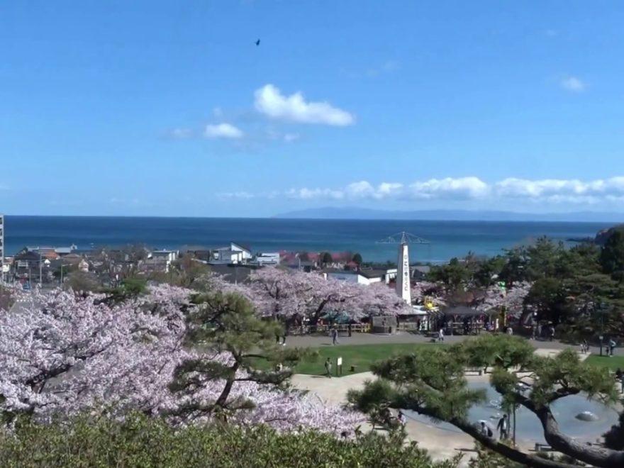 函館公園(北海道) | 2019年夜桜ライトアップ・見頃情報