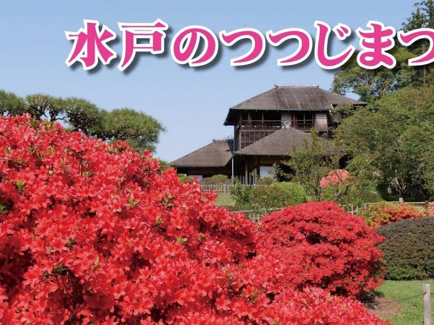 偕楽園・千波公園・水戸市森林公園(茨城) | 2019年つつじ祭り・見頃情報