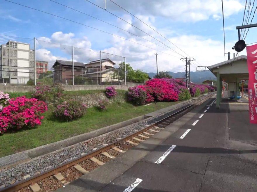 JR豊浜駅(香川) | 2019年つつじ祭り・見頃情報