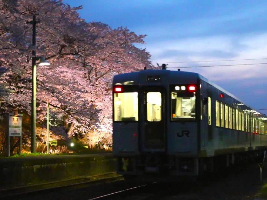 JR舞木駅(もうぎえき)(福島) | 2019年夜桜ライトアップ・見頃情報