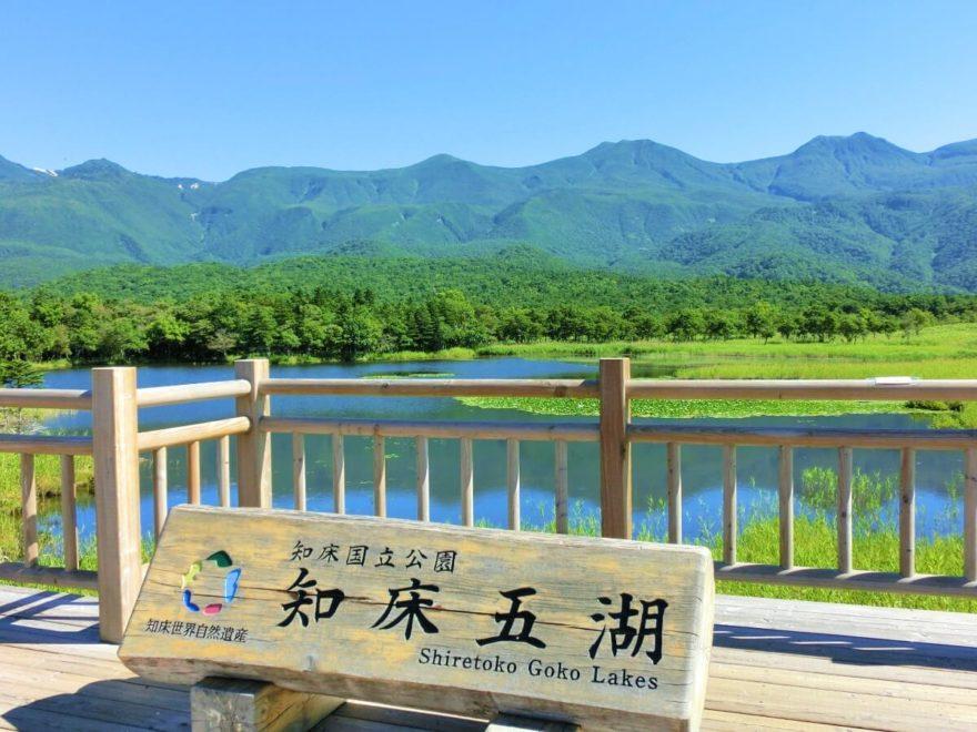 知床五湖と原生林を散策!ガイド...