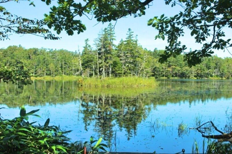 知床五湖画像
