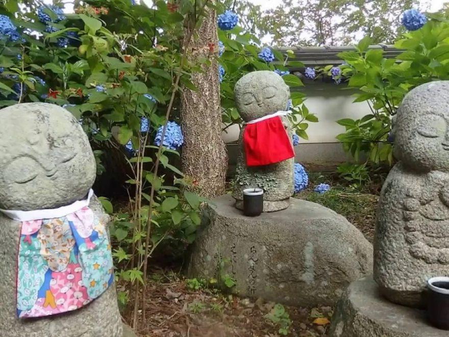 丹州観音寺(京都) | 2019年あじさい祭り・見頃情報