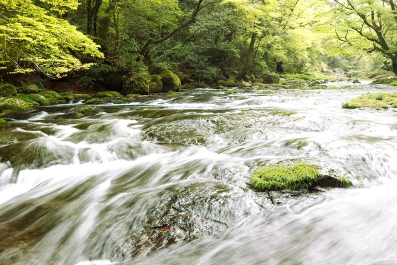 菊池渓谷渓流2
