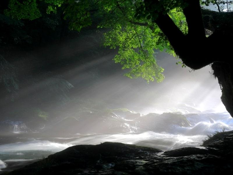菊池渓谷光芒