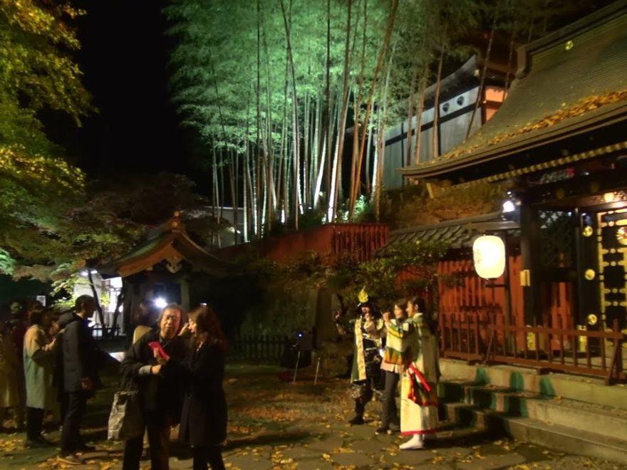 瑞鳳殿(宮城) | 2019年紅葉ライトアップ情報