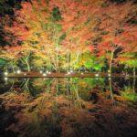 【中止】曽木公園(岐阜) | 2020年紅葉ライトアップ・見頃情報
