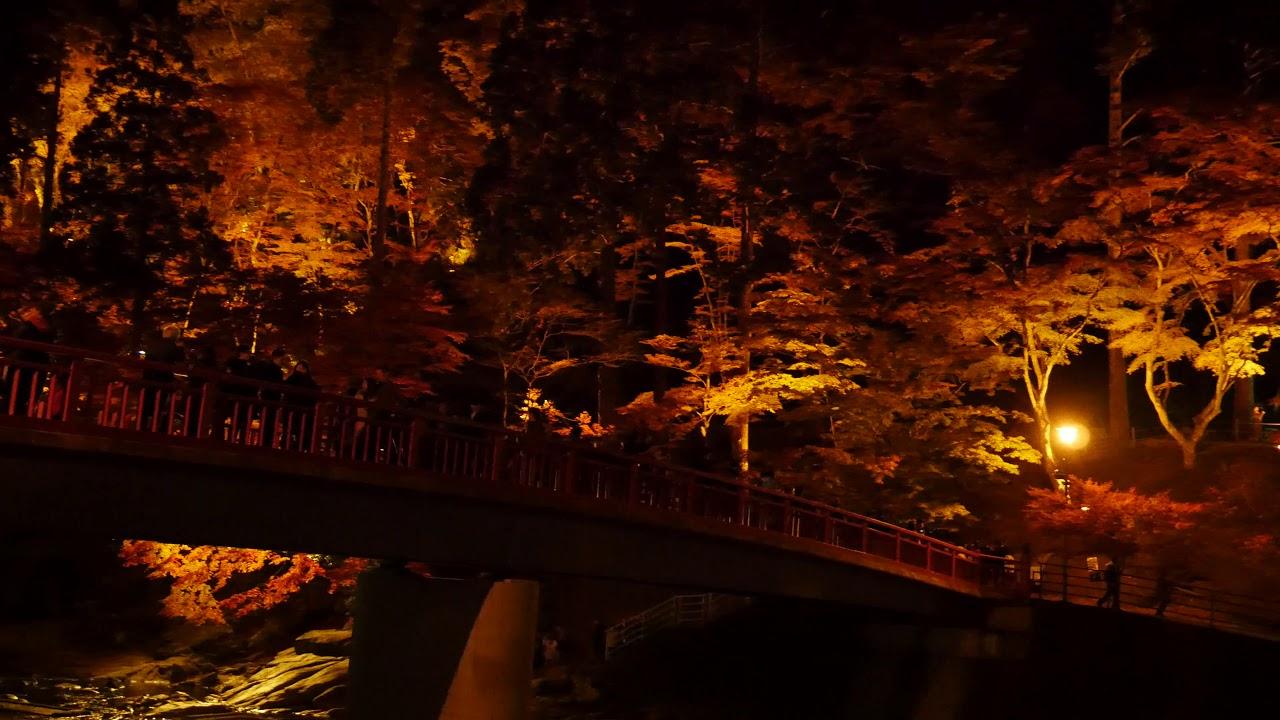 見頃 紅葉 嵐 香 渓