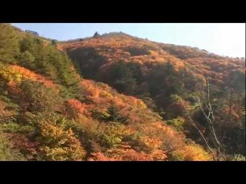 剣山(徳島) | 2019年紅葉まつり・見頃情報