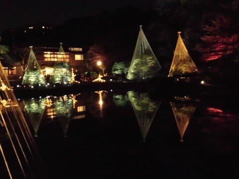 肥後細川庭園(東京) | 2019年紅葉ライトアップ情報
