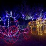 中山池自然公園(愛媛) | 2020年イルミネーション・ライトアップ情報