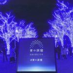 代々木公園ケヤキ並木~渋谷公園通り(東京) | 2019年イルミネーション・ライトアップ情報