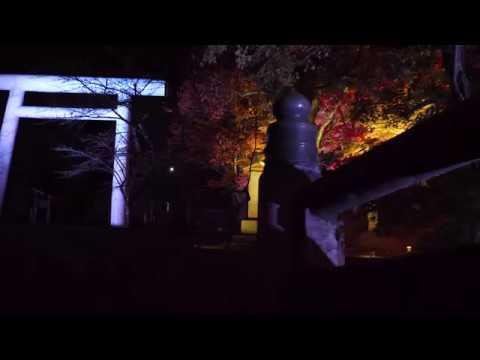 猪苗代町 土津神社(はにつじんじゃ)(福島) | 2019年紅葉ライトアップ・見頃情報