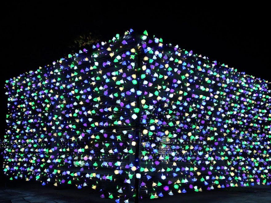 茨城県フラワーパーク(茨城) | 2019年イルミネーション・ライトアップ情報