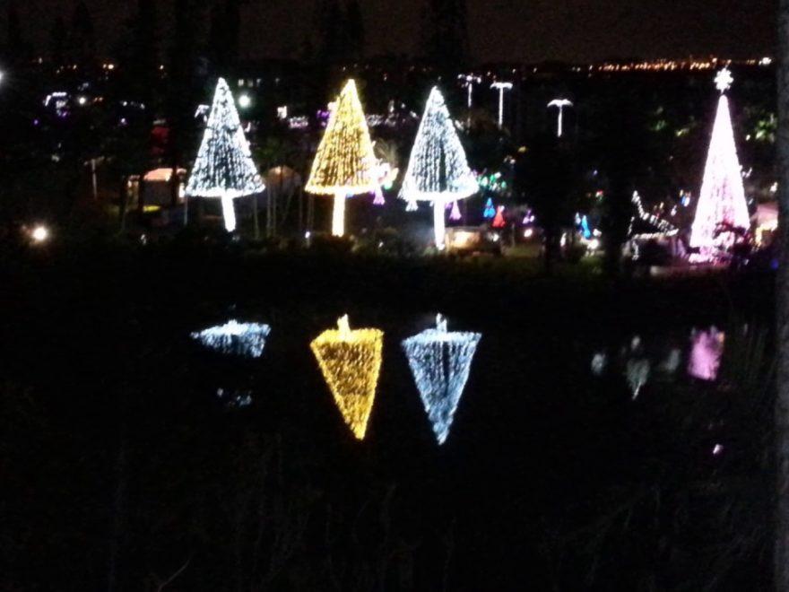 東南植物楽園(沖縄) | 2019年イルミネーション・ライトアップ情報