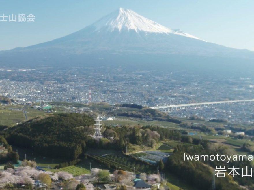 岩本山公園(静岡) | 2020年夜桜ライトアップ・見頃情報