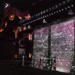 二条城(京都) | 2021年桜祭り・夜桜ライトアップ・見頃情報