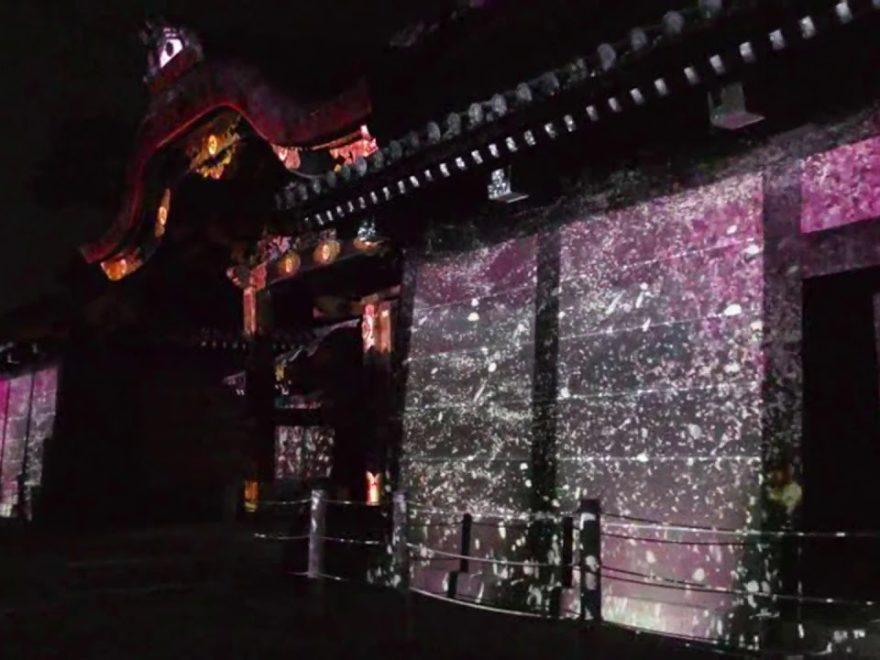 二条城(京都) | 2020年桜祭り・夜桜ライトアップ・見頃情報