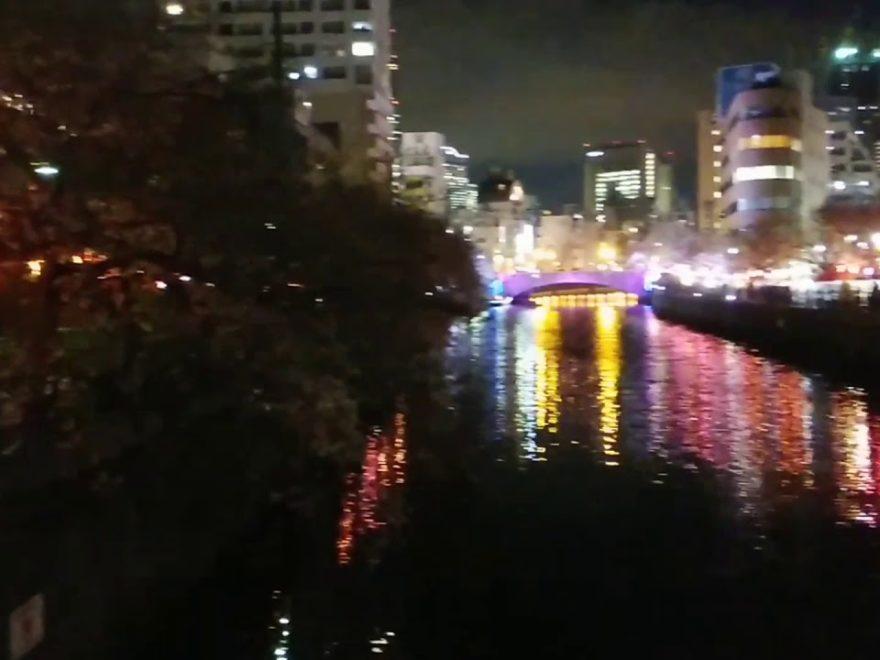大岡川下流(中区)左岸右岸(神奈川) | 2020年桜祭り・夜桜ライトアップ・見頃情報