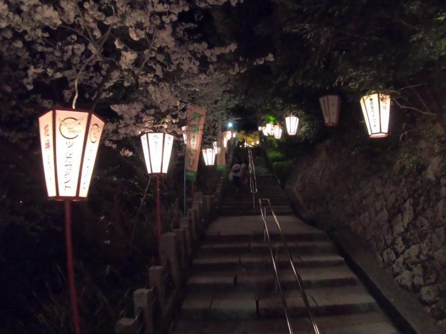 金崎宮(福井) | 2020年桜祭り・夜桜ライトアップ・見頃情報