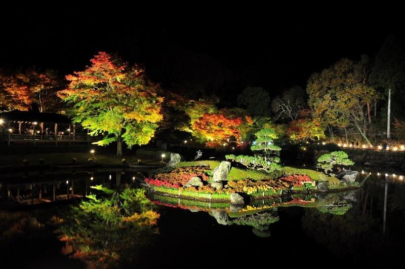 修善寺虹の郷_日本庭園ライトアップ