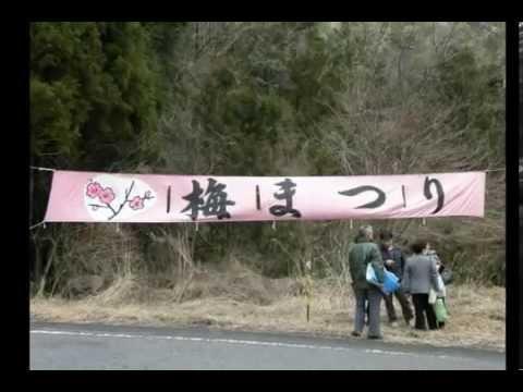 【中止】梅ヶ島温泉 梅園(静岡) | 2020年梅まつり・見頃情報