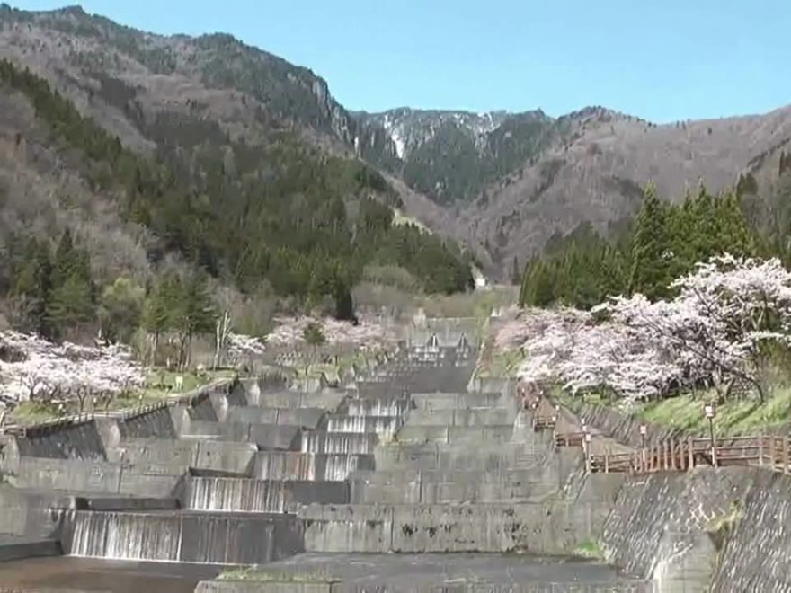 栃尾温泉洞谷一帯(富山) | 2020年桜祭り・夜桜ライトアップ・見頃情報