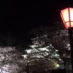 【中止】大阪城公園(大阪) | 2021年桜祭り・夜桜ライトアップ・見頃情報