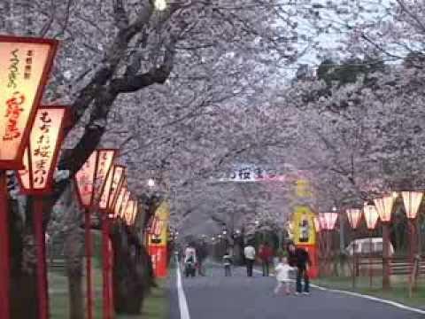 母智丘(もちお)公園(宮崎) | 2020年桜祭り・夜桜ライトアップ・見頃情報