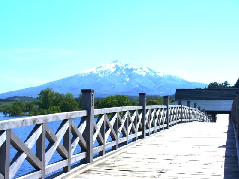 鶴の舞橋カバー画像