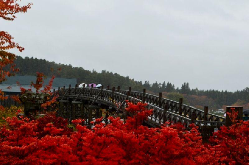 鶴の舞橋と紅葉