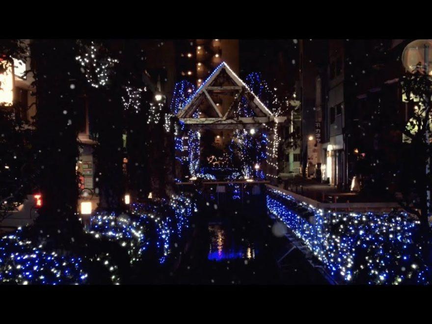 宇都宮市街(栃木) | 2020年イルミネーション・ライトアップ情報