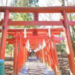 新屋山神社で金運祈願!奥宮への参拝やアクセス情報も解説