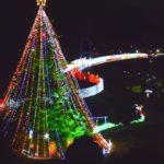 【ツリーのみ点灯】宮ヶ瀬湖畔園地(神奈川) | 2020年イルミネーション・ライトアップ情報