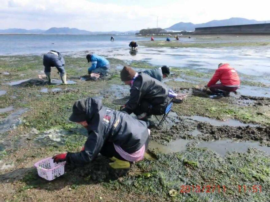 小中山地区海岸(愛知県田原市) | 2021年潮干狩り情報