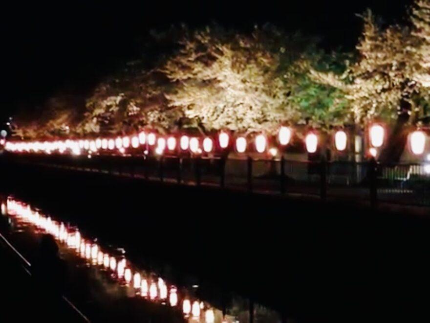 葛西用水路沿い(埼玉) | 2021年桜祭り・夜桜ライトアップ・見頃情報
