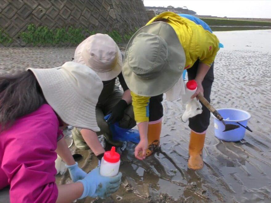 【中止】松江浦海岸(福岡県豊前市) | 2021年潮干狩り情報
