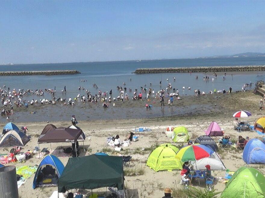 山田海岸(愛知県南知多町) | 2021年潮干狩り情報