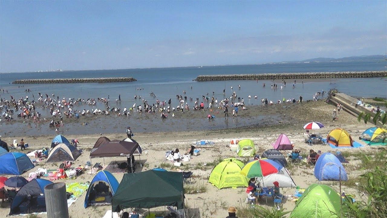 山田海岸(愛知県南知多町)   2021年潮干狩り情報