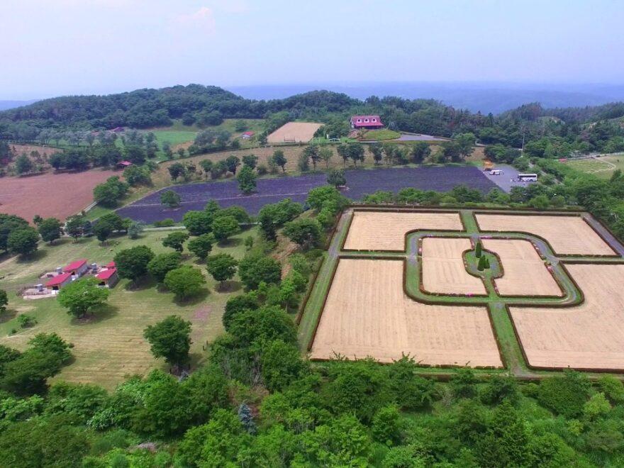 館ヶ森アーク牧場(岩手県一関市) | 2021年ラベンダー祭り・見頃情報