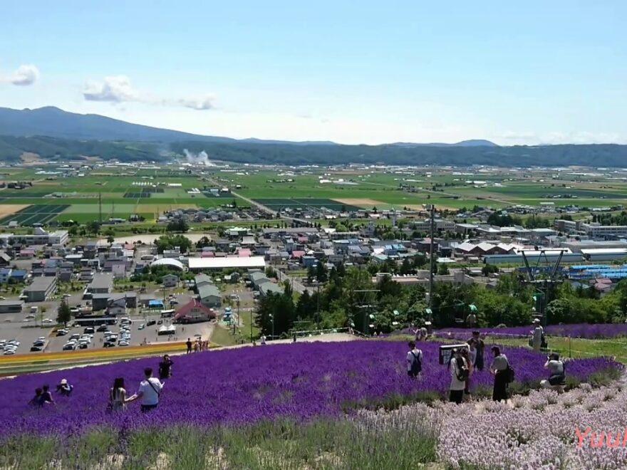 【中止】北星山ラベンダー園(北海道中富良野町) | 2021年ラベンダー祭り・見頃情報